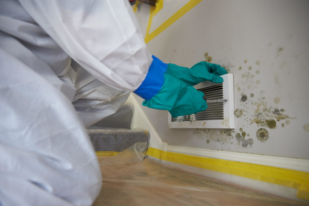 How to Test for Mold-South Florida Mold Remediation & Water Damage Restoration Services-We offer home restoration services, water damage restoration, mold removal & remediation, water removal, fire and smoke damage services, fire damage restoration, mold remediation inspection, and more.
