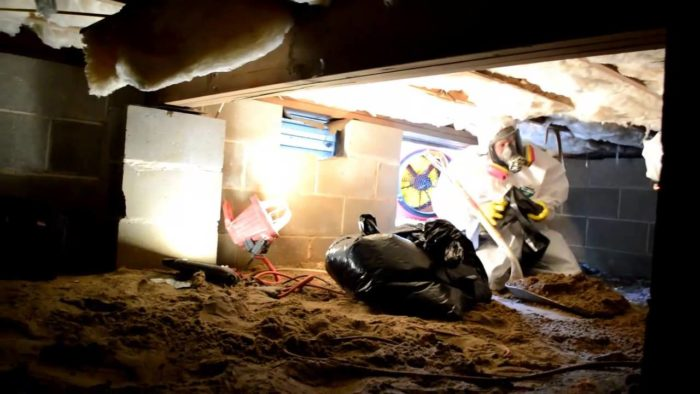 Sewage Clean Up-South Florida Mold Remediation & Water Damage Restoration Services-We offer home restoration services, water damage restoration, mold removal & remediation, water removal, fire and smoke damage services, fire damage restoration, mold remediation inspection, and more.